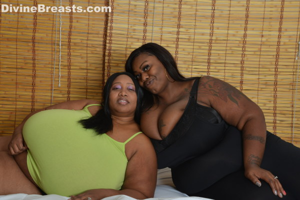 Big booty ms diva shakes that huge ass 7
